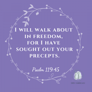 I will walk about in freedom, for I have sought out your precepts. Psalm 119:45