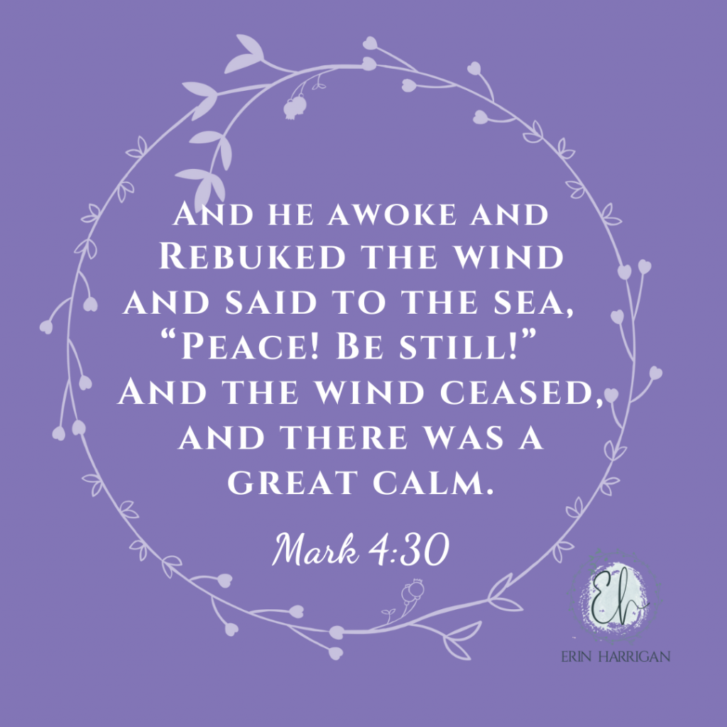 """And HE awoke and rebuked the wind and said to the sea, """"Peace! Be still!"""" and the wind ceased, and there was a great calm. Mark 4:30"""